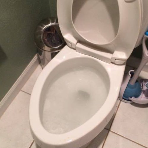 A Picture of a Toilet That Has Just Been Unclogged.